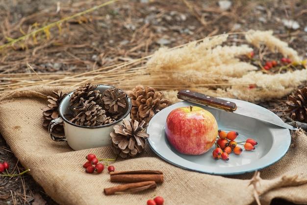 Picknick in einem pinienwald. eine vintage-metallschüssel mit einem apfel, rosenbeeren und einem messer auf einer dorftischdecke