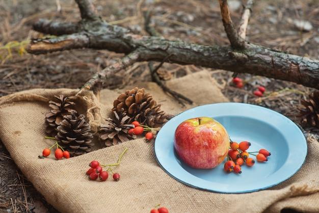 Picknick in einem pinienwald. eine vintage metallschüssel mit einem apfel und rosenbeeren auf einer dorftischdecke mit zapfen herum. neujahr und weihnachten hintergrund, postkarte. winterstimmung