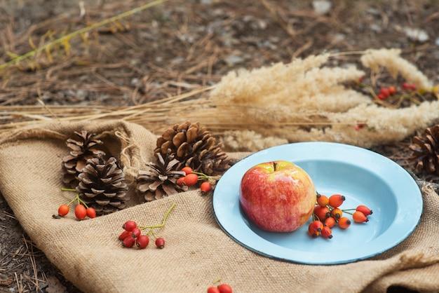 Picknick in einem pinienwald. eine vintage metallschüssel mit einem apfel und rosenbeeren auf einer dorftischdecke mit zapfen herum.
