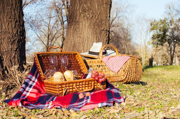 Picknickkörbe der vorderansicht voll von den guten sachen