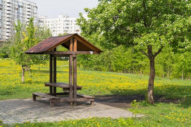 Picknickplatz im öffentlichen park nahe wohnhaus, gelber löwenzahnwiese und frühlingsbaum herum
