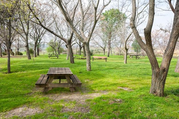 Picknicktisch aus holz in einem öffentlichen park mit frischem grünem gras