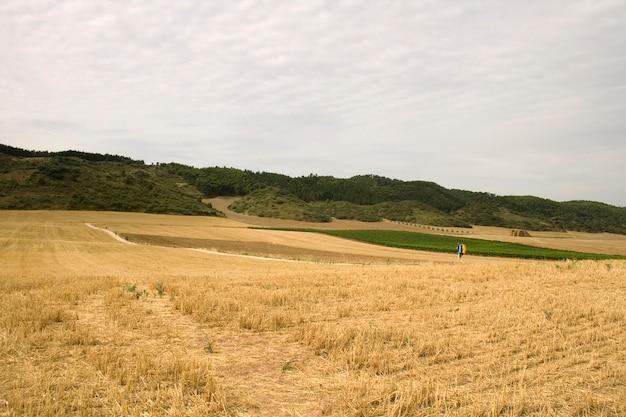 Pilger; jakobsweg