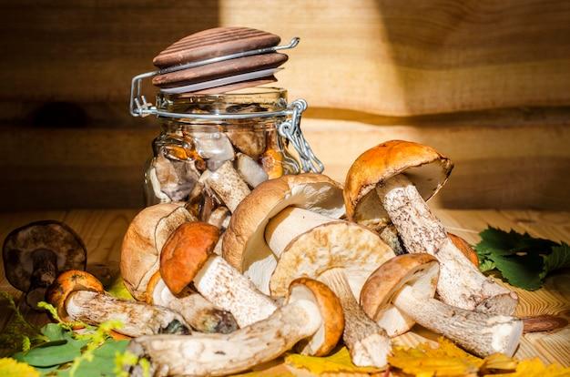 Pilze in der bank zum ernten für den winter