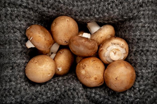 Pilze in einer grauen strickschachtel