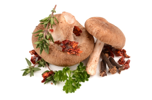 Pilze mit kräutern