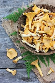 Pilzpfifferlinge in einem korb und in einem farn treiben auf dem tisch, draufsicht blätter.