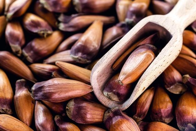 Pinienkerne, kulinarische zutat für getränke, süßigkeiten und typische gerichte