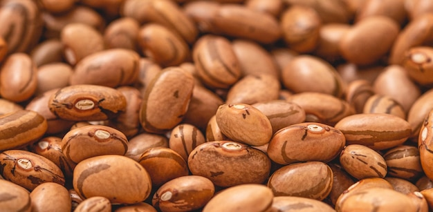 Pintobohnen in nahaufnahmefoto für landwirtschaft und lebensmittelthema food