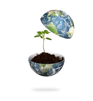 Planet erde in zwei hälften gespalten mit einer pflanze