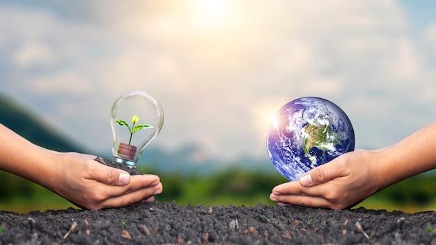 Planet in menschlichen händen und händen, die sämlinge halten, die auf münzen in glühbirnen, energie- und umweltschutzkonzepten wachsen. elemente dieses von der nasa bereitgestellten bildes.