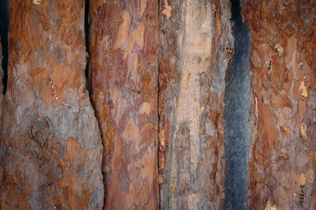 Planken-hintergrund, hölzerner hintergrund des schmutzes. holz textur. natürlicher hölzerner hintergrund