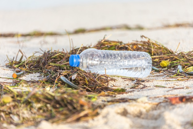 Plastikflasche mit kappe wusch sich oben auf dem strand, der mit meerespflanze gemischt wurde