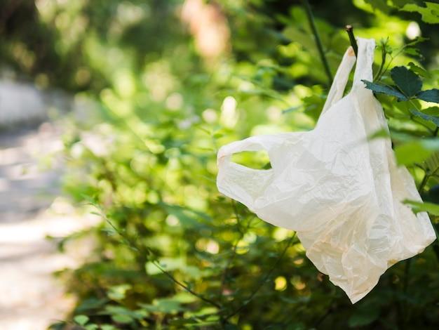 Plastiktasche, die am baumast an draußen hängt