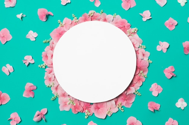 Platte auf zusammensetzung von wundervollen rosafarbenen blumen und von pflanzen