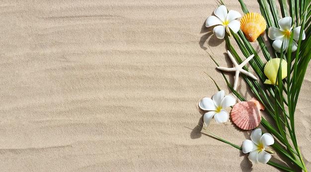 Plumeria blüht mit seesternen und muscheln auf tropischen palmblättern auf sand. sommerhintergrundkonzept