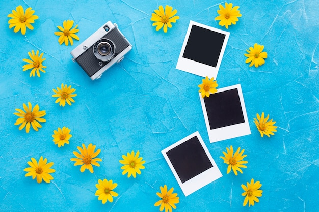Polaroidkamera und fotos mit spanischer austerndistel
