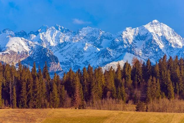 Polnische tatra berge landschaft