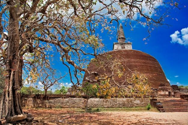 Polonnaruwa, alte stupa. historische und religiöse wahrzeichen von sri lanka