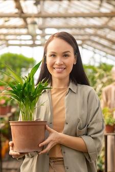 Porträt der glücklichen jungen asiatischen frau im freizeithemd, das mit grüner pflanze im topf steht, während im gewächshaus arbeitet