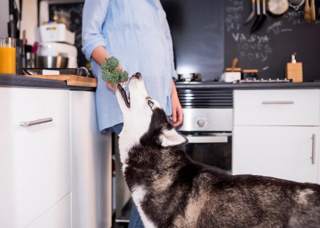 Porträt der modernen frau zu hause mit hund