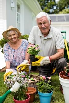Porträt des älteren paares, das zusammen im hinterhof arbeitet