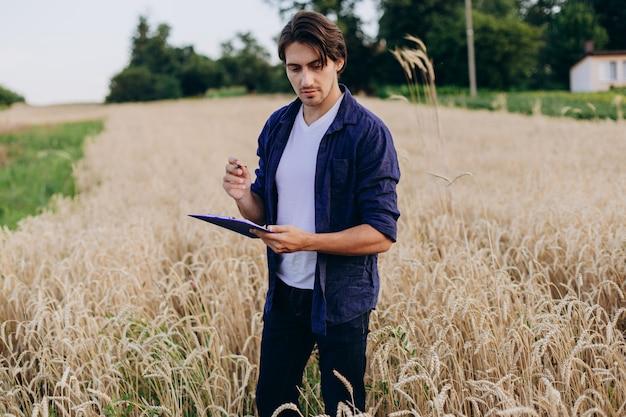 Porträt des agronomen auf einem weizengebiet, das kontrolle über den ertrag übernimmt.