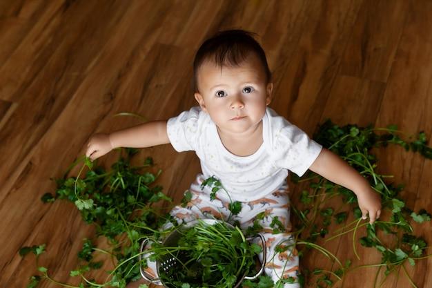 Porträt des kleinen mädchens, das auf dem boden sitzt und mit grünem koriander spielt, erforscht und sich wundert
