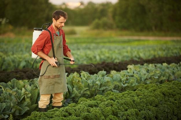 Porträt des männlichen arbeiters, der ernten und gemüse mit dünger besprüht, während er auf plantage steht, kopieren sie raum