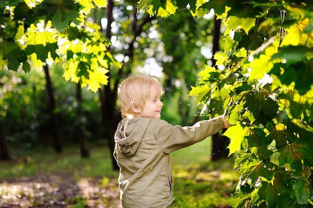 Porträt des netten glücklichen kleinen jungen, der spaß im sommerpark nach regen hat