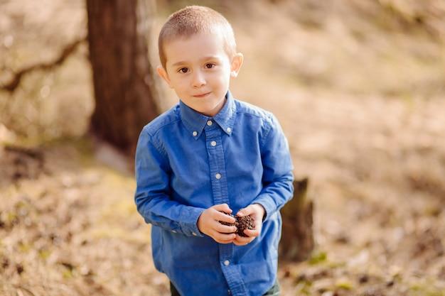 Porträt des niedlichen entzückenden kleinen jungen, der einen haufen tannenzapfen hält