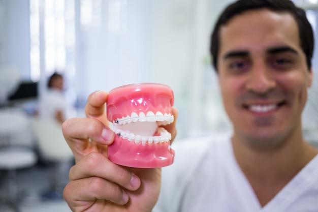 Porträt des zahnarztes, der einen satz zahnersatz hält