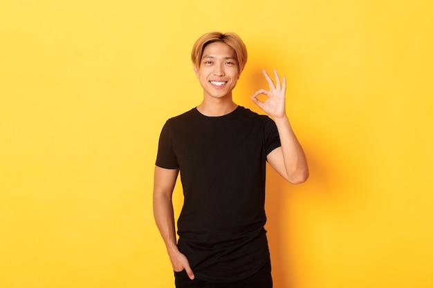Porträt des zufriedenen und glücklichen asiatischen lächelnden kerls, zeigt okay geste in der zustimmung, lobt gute arbeit, gelbe wand
