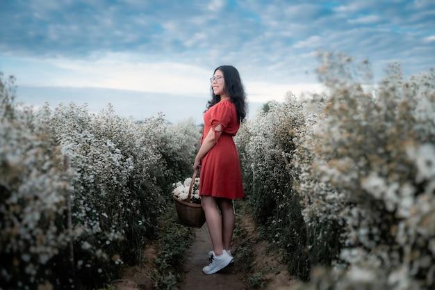 Porträt einer asiatischen jungen frau, die glückliche reisende mit rotem kleid genießt, die in weiß blühendem oder weißem marguerite daisy-blumenfeld genießt, um einen blumenkorb im naturgarten von chiang mai, thailand, zu halten