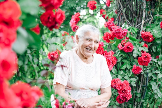 Porträt einer charmanten weißhaarigen alten frau, die auf einer bank unter einem bogen der wilden rosen sitzt