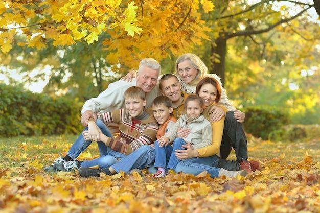 Porträt einer freundlichen familie zusammen im herbstpark