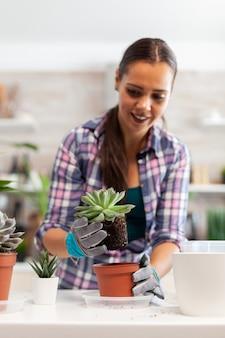 Porträt einer glücklichen frau, die sukkulente auf dem tisch in der küche hält. frau pflanzt blumen in keramiktopf mit schaufel, handschuhen, fruchtbarem boden und blumen für die hausdekoration um.