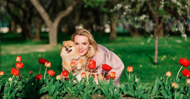 Porträt einer jungen glamourösen frau, die rosa kleid trägt und ihren niedlichen pommerschen spitz auf händen hält. . konzept freundschaft zwischen hunden und menschen.