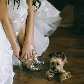 Porträt einer kleinen hunderasse yorkshire terrier, die auf dem boden zu füßen einer gesichtslosen braut liegt, die silberne sandalen trägt. haustierliebeskonzept. braut morgen vorbereitung.