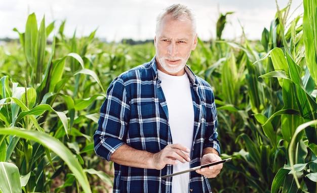 Porträt eines älteren agronomen, der auf einem maisgebiet steht, das kontrolle über den ertrag mit ipad übernimmt
