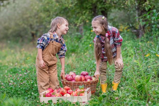 Porträt eines bruders und der schwester im garten mit roten äpfeln in ihren händen.