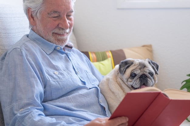 Porträt eines klaren reinrassigen mopshundes, der mit seinem seniorbesitzer auf dem sofa sitzt und sich zusammen entspannt