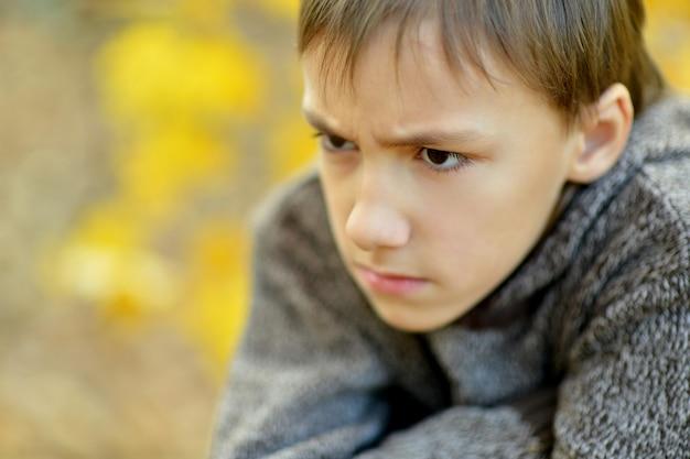 Porträt eines kleinen traurigen jungen im herbstpark
