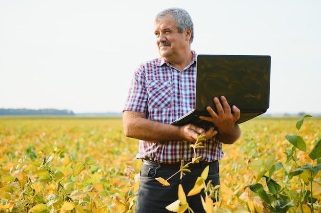 Porträt eines leitenden, fleißigen landwirt-agronomen, der auf dem sojabohnenfeld steht und die ernte vor der ernte überprüft. biologische lebensmittelproduktion und -anbau.