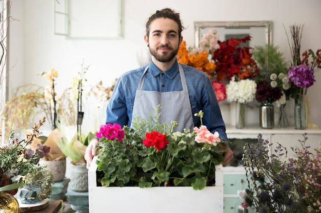 Porträt eines männlichen floristen, der die bunte hortensie hält, blüht in der kiste
