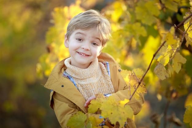 Porträt eines niedlichen blonden jungen nahe einem baum mit gelben blättern