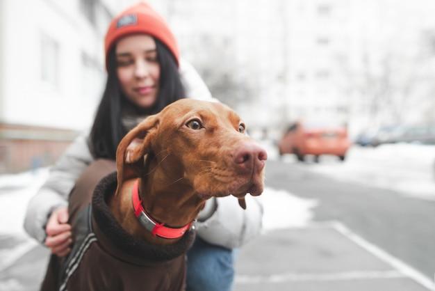 Porträt eines niedlichen braunen hundes auf der straße