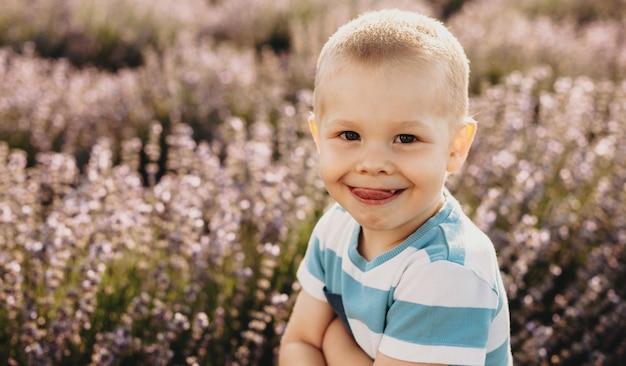 Porträt eines reizenden kleinen kindes, das kamera betrachtet, die spaß hat, während zunge in einem blumenfeld am sonnenuntergang zeigt.