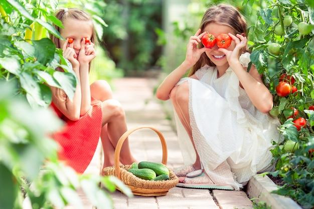 Porträt von kindern mit den großen tomaten in den händen im gewächshaus