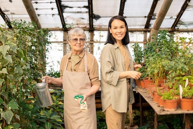 Porträt von lächelnden älteren und jungen multiethnischen frauen, die an pflanzen im gewächshaus stehen